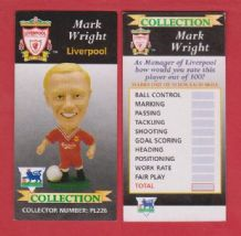 Liverpool Mark Wright England PL226